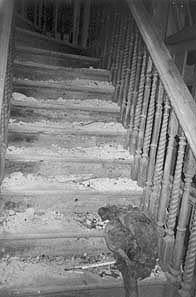 Samudra Villa: dilapidated staircase
